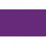 PocketSmith US | CPA Logo